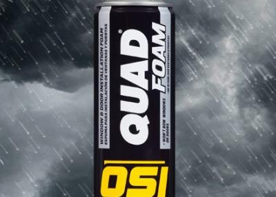 QUAD 16 fl. oz. Window and Door Installation Foam for Dual Use with Gun